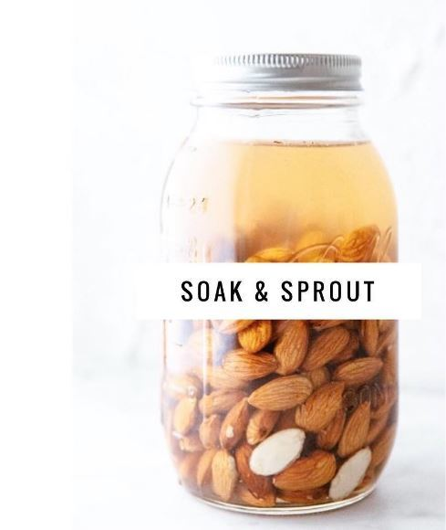 Why You Should Soak and Sprout Your Nuts & Seeds